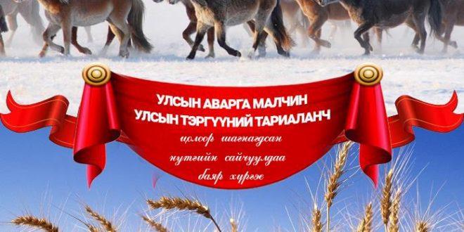 МАНАЙ АЙМГААС УЛСЫН АВАРГА МАЛЧИН-8 ТОДОРЛОО